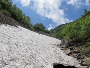 藪沢の残雪