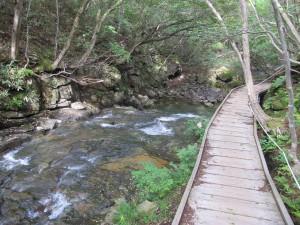 自然遊歩道2